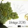 Godello Vintage 2016