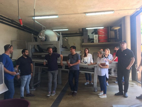 Vinification process at Adega A Coroa