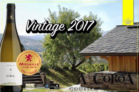 Vintage 2017 Godello A Coroa