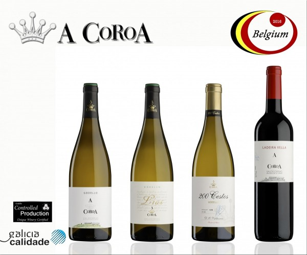Presentation of A Coroa 2015 vintage in Belgium.