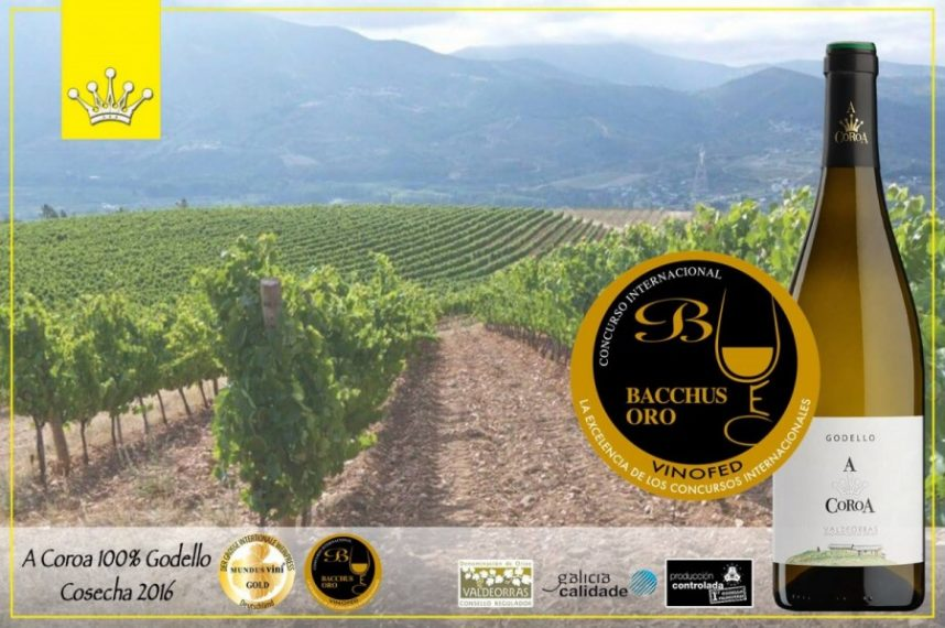 Golden Bacchus for the new vintage A Coroa 2016