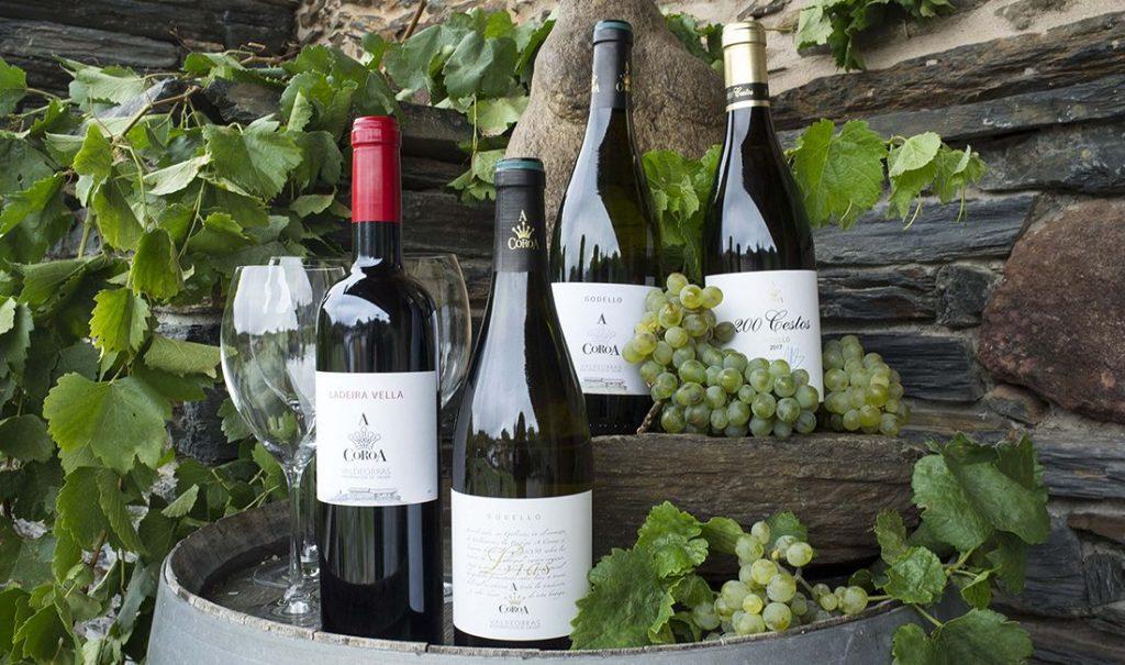 Godello, Valdeorras, A Coroa, Wines, Spain