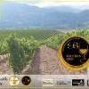 Godello, A Coroa, Comprar, AGodello, A Coroa, Comprar, Godello, Online, Valdeorras, vino Coroa Bacchus de OroGodello, Online,