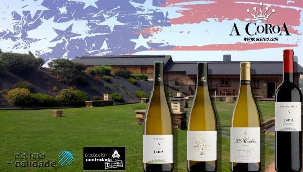 Adega A Coroa recibe a especialistas del vino de Norteamérica.